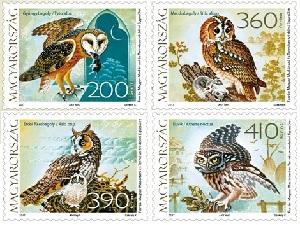 Magyarország állatvilága: Baglyok - Fauna of Hungary: Owls